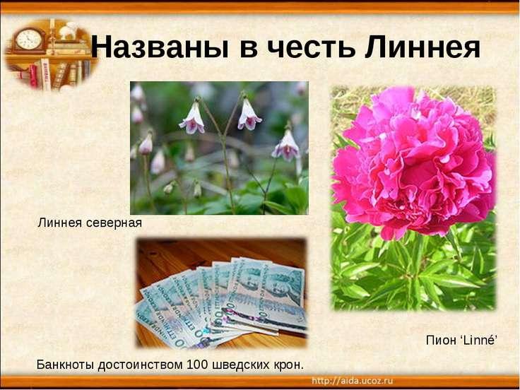 Названы в честь Линнея Линнея северная Пион 'Linné' Банкноты достоинством 100...