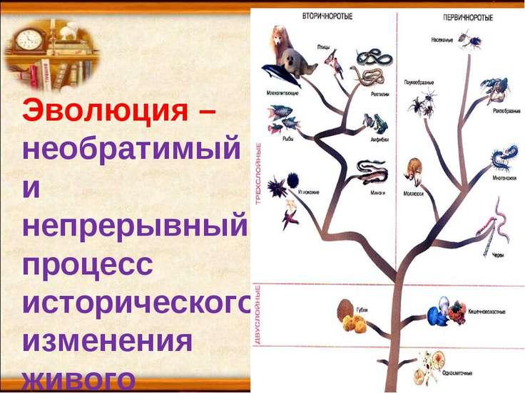 Эволюция – необратимый и непрерывный процесс исторического изменения живого