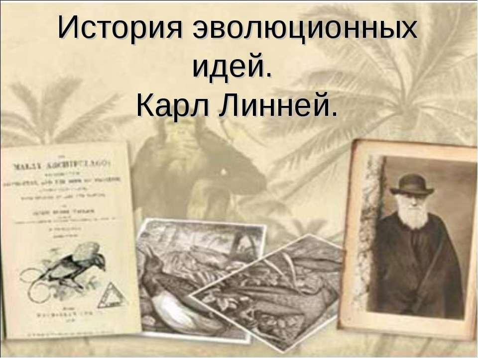 История эволюционных идей. Карл Линней.