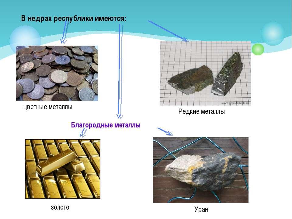 цветные металлы В недрах республики имеются: Редкие металлы Благородные метал...