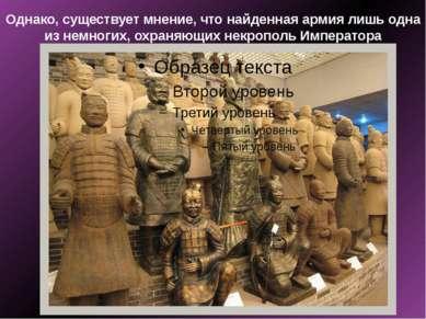 Однако, существует мнение, что найденная армия лишь одна из немногих, охраняю...