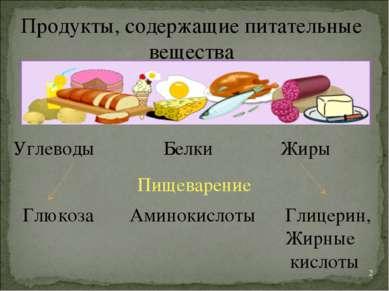 * Продукты, содержащие питательные вещества Углеводы Белки Жиры Глюкоза Амино...