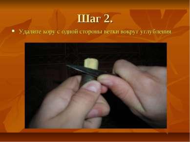 Шаг 2. Удалите кору с одной стороны ветки вокруг углубления