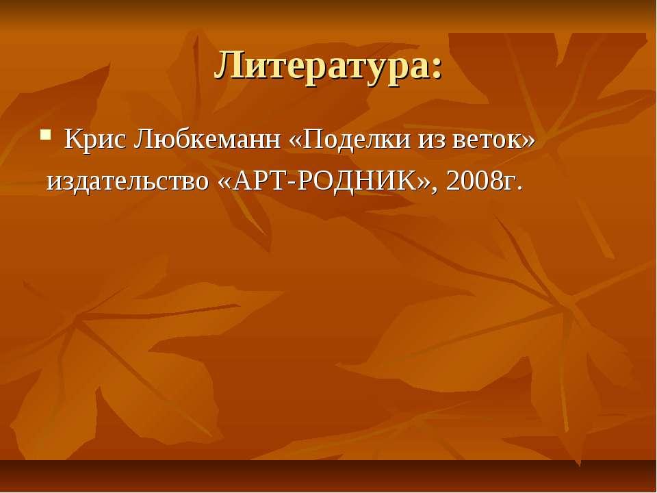 Литература: Крис Любкеманн «Поделки из веток» издательство «АРТ-РОДНИК», 2008г.