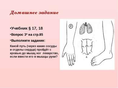 Домашнее задание Учебник § 17, 18 Вопрос 3* на стр.85 Выполните задание: Како...
