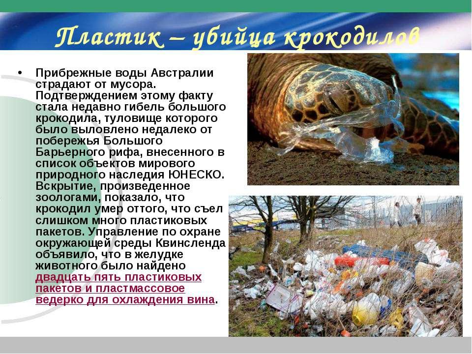 Пластик – убийца крокодилов Прибрежные воды Австралии страдают от мусора. Под...