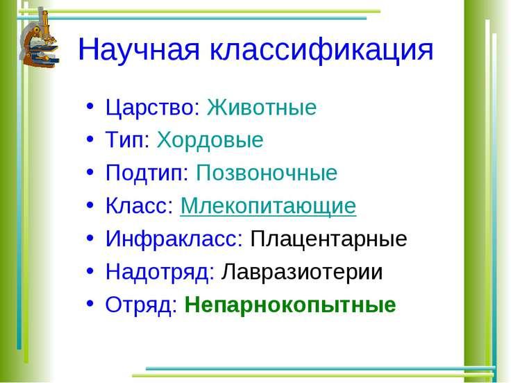 Научная классификация Царство: Животные Тип: Хордовые Подтип: Позвоночные Кла...