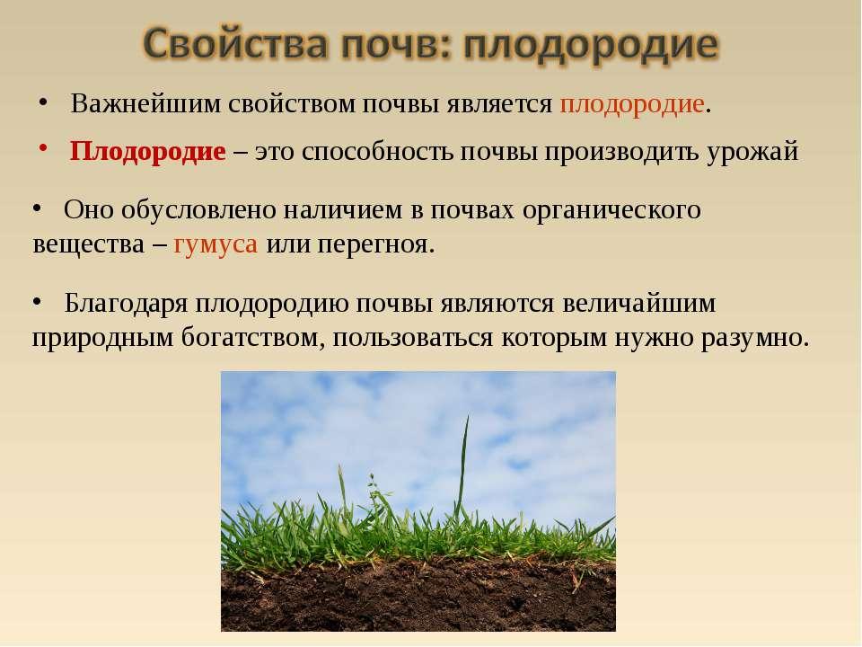 Оно обусловлено наличием в почвах органического вещества – гумуса или перегно...