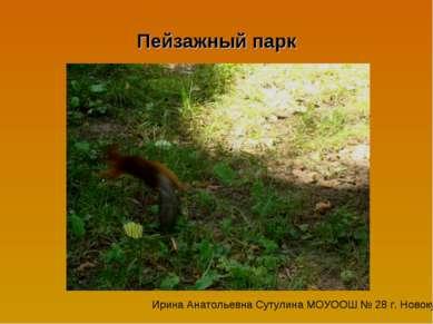 Пейзажный парк Ирина Анатольевна Сутулина МОУООШ № 28 г. Новокубанска