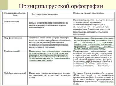Принципы русской орфографии