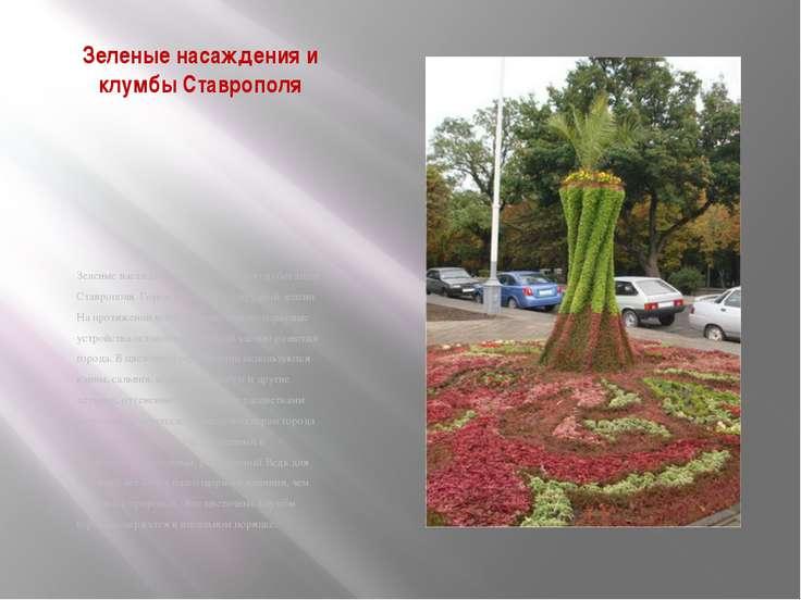 Зеленые насаждения и клумбы Ставрополя Зеленые насаждения составляют одно из ...