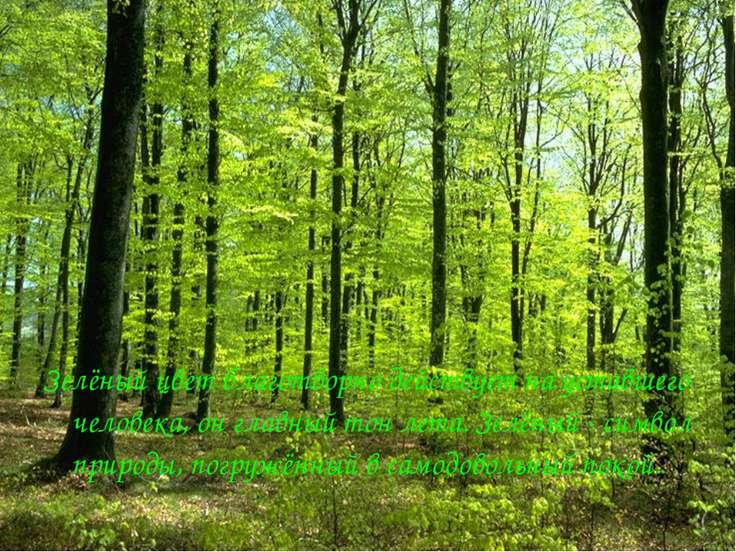 Зелёный цвет благотворно действует на уставшего человека, он главный тон лета...