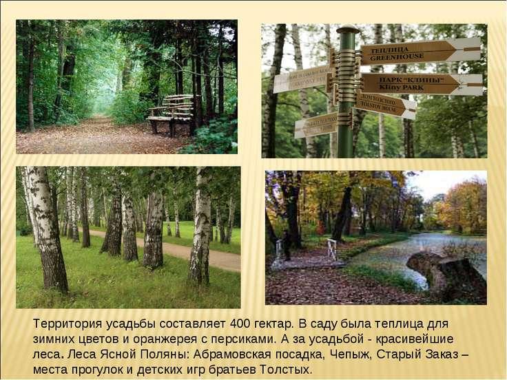 Территория усадьбы составляет 400 гектар. В саду была теплица для зимних цвет...