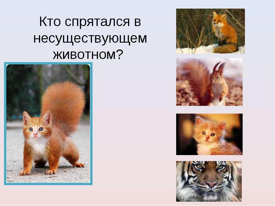 Кто спрятался в несуществующем животном?