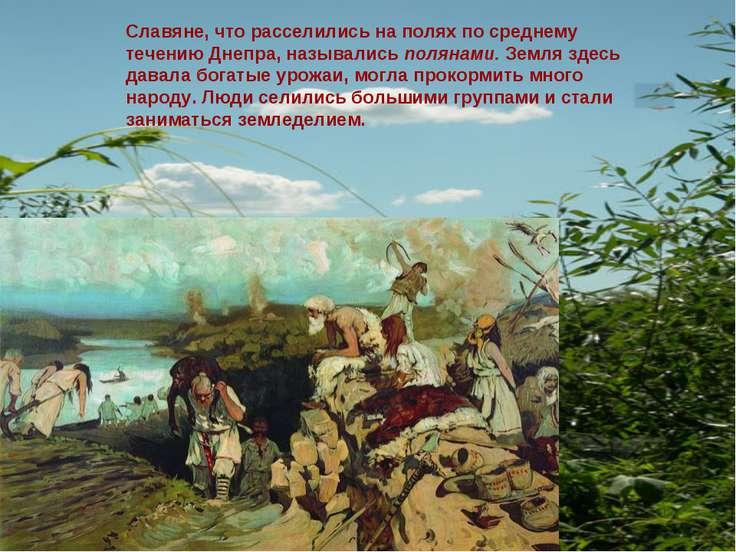 Славяне, что расселились на полях по среднему течению Днепра, назывались поля...