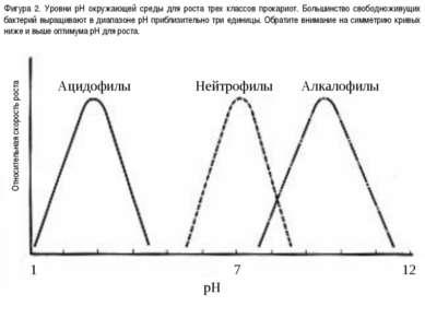 Фигура 2. Уровни pH окружающей среды для роста трех классов прокариот. Больши...