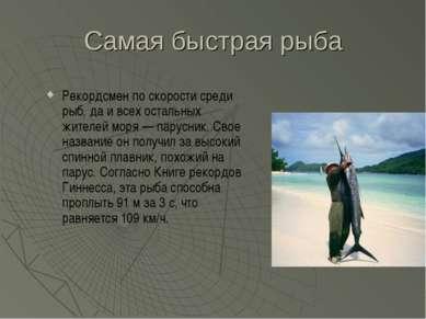 Самая быстрая рыба Рекордсмен по скорости среди рыб, да и всех остальных жите...