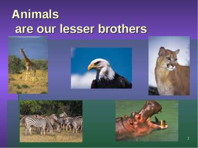 Animals are our lesser brothers