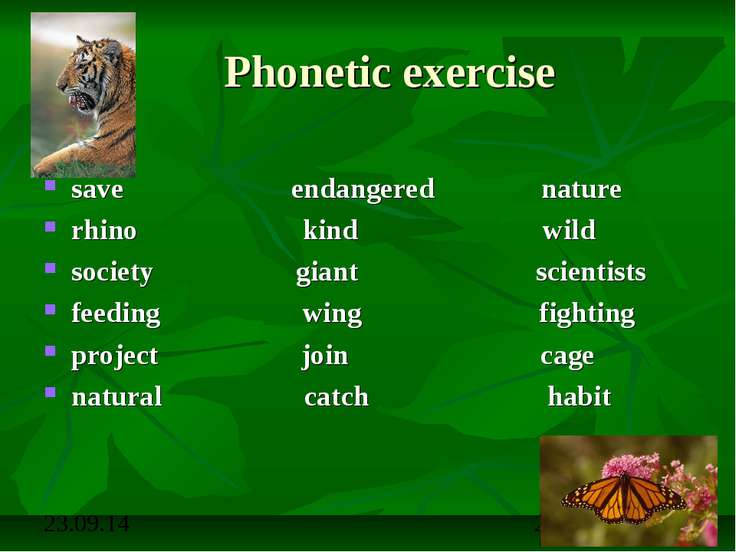 Phonetic exercise save endangered nature rhino kind wild society giant scient...
