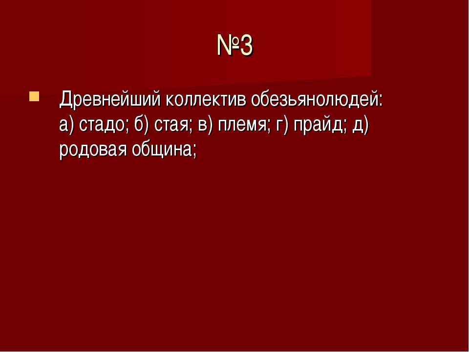 №3 Древнейший коллектив обезьянолюдей: а) стадо; б) стая; в) племя; г) прайд;...