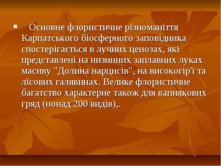 Основне флористичне різноманіття Карпатського біосферного заповідника спостер...