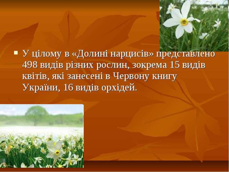 У цілому в «Долині нарцисів» представлено 498 видів різних рослин, зокрема 15...
