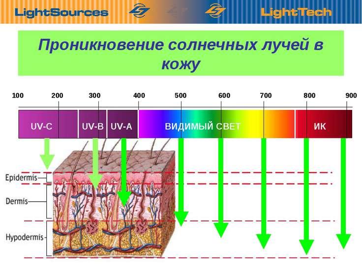 Проникновение солнечных лучей в кожу 100 200 300 400 500 600 700 800 900 UV-C...