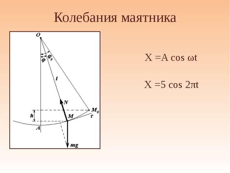 """Колебания маятника X =A cos ωt АНО """"Павловская гимназия"""" X =5 cos 2πt"""