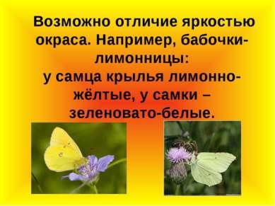 Возможно отличие яркостью окраса. Например, бабочки-лимонницы: у самца крылья...