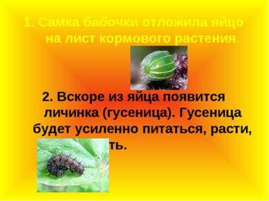 1. Самка бабочки отложила яйцо на лист кормового растения. 2. Вскоре из яйца ...