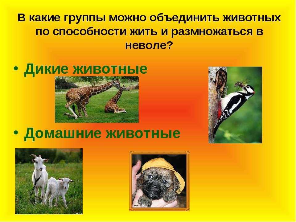 В какие группы можно объединить животных по способности жить и размножаться в...