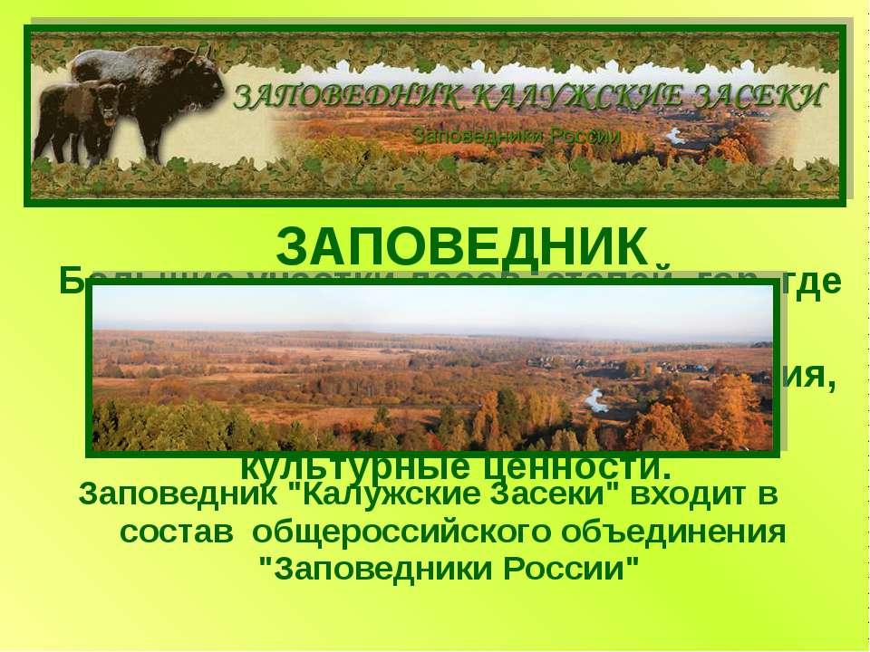 ЗАПОВЕДНИК Большие участки лесов, степей, гор, где люди оберегают и сохраняют...