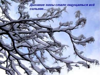 Дыхание зимы стало ощущаться всё сильнее…