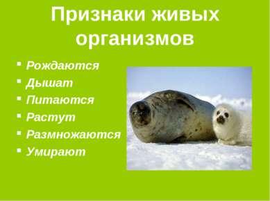 Признаки живых организмов Рождаются Дышат Питаются Растут Размножаются Умирают