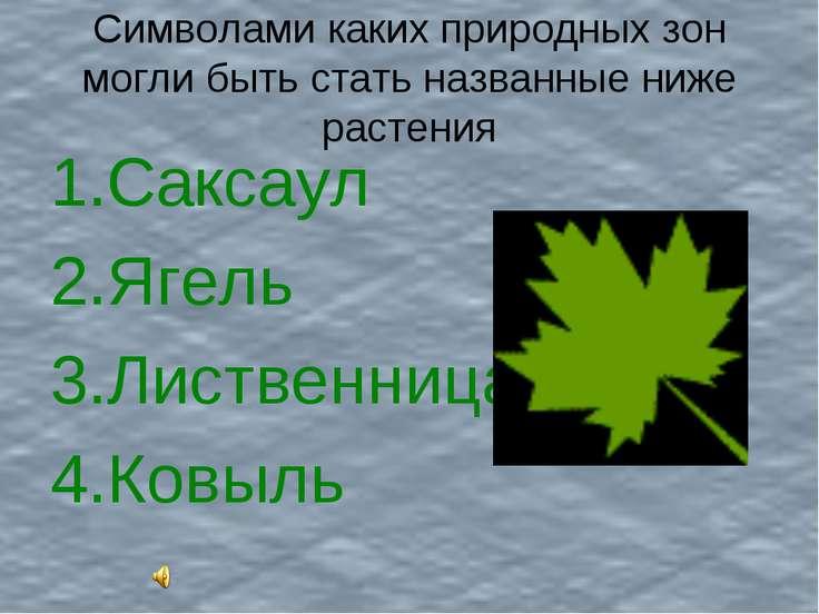 Символами каких природных зон могли быть стать названные ниже растения Саксау...