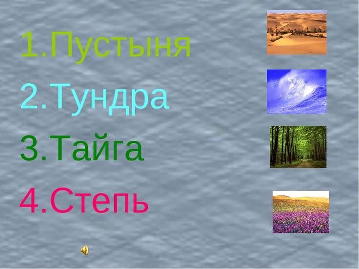 Пустыня Тундра Тайга Степь