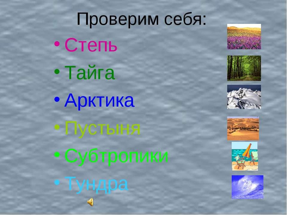Проверим себя: Степь Тайга Арктика Пустыня Субтропики Тундра