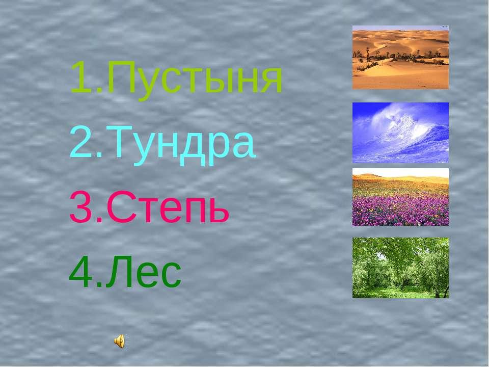 Пустыня Тундра Степь Лес