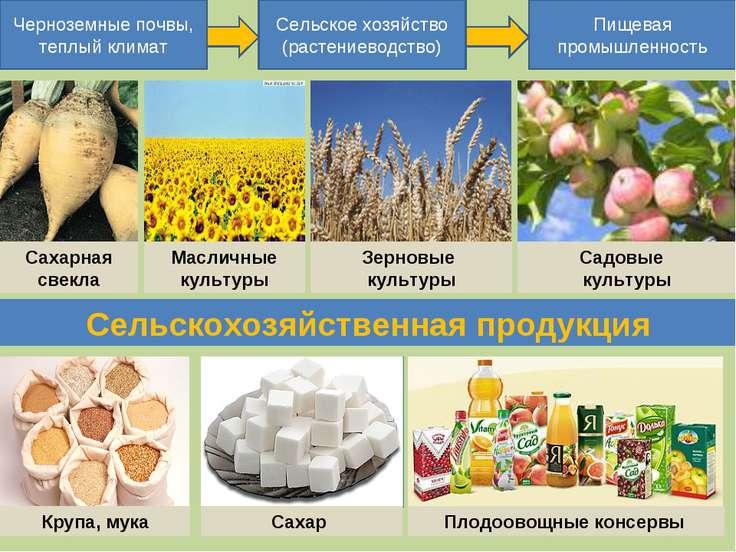 Черноземные почвы, теплый климат Сельское хозяйство (растениеводство) Пищевая...