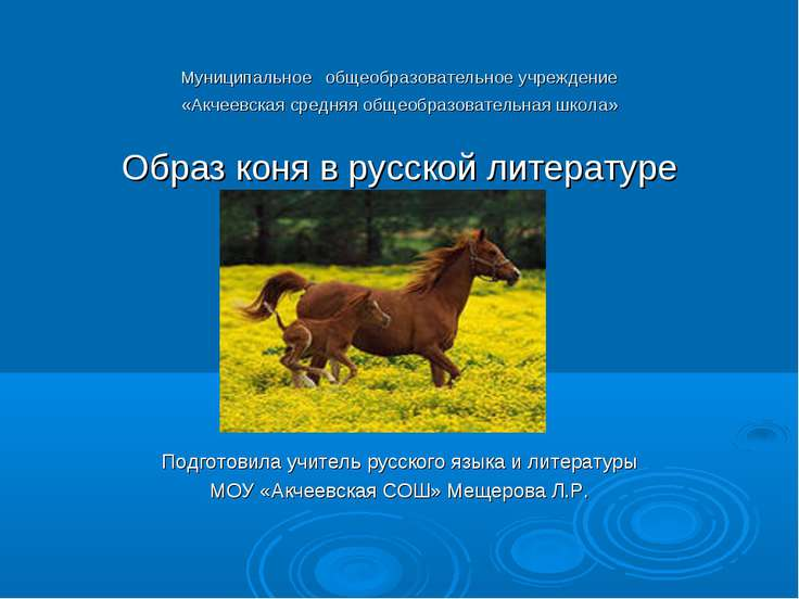 Муниципальное общеобразовательное учреждение «Акчеевская средняя общеобразова...
