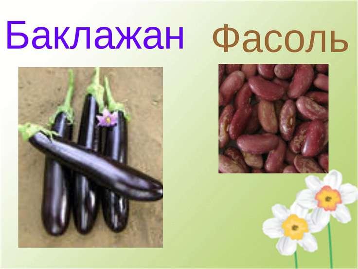 Баклажан Фасоль
