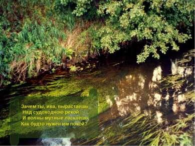 Зачем ты, ива, вырастаешь Над судоходною рекой И волны мутные ласкаешь, Как б...
