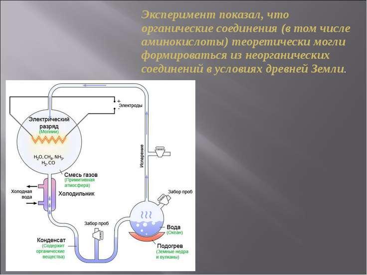 Эксперимент показал, что органические соединения (в том числе аминокислоты) т...