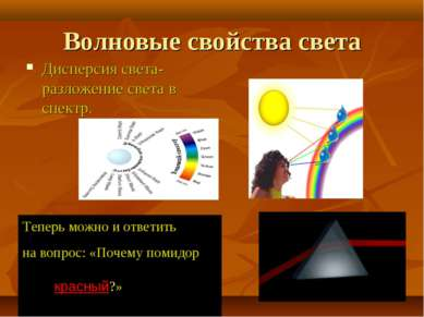 Волновые свойства света Дисперсия света- разложение света в спектр. Теперь мо...