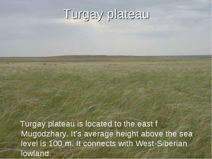Turgay plateau Turgay plateau is located to the east f Mugodzhary. It's avera...