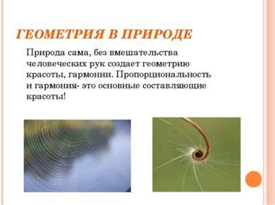 ГЕОМЕТРИЯ В ПРИРОДЕ Природа сама, без вмешательства человеческих рук создает ...