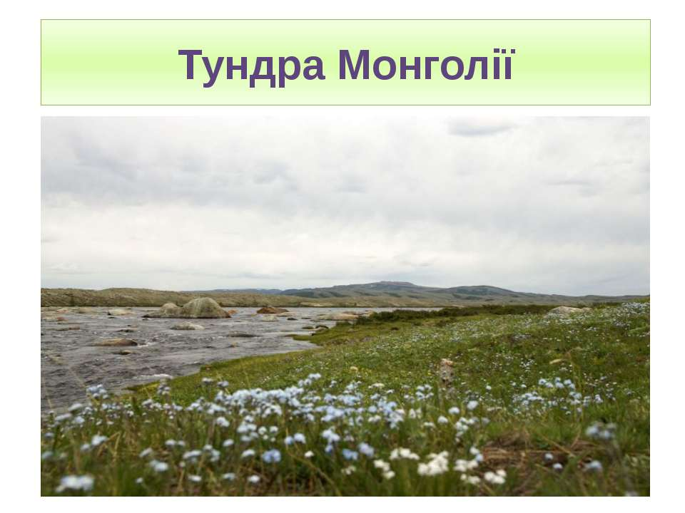 Тундра Монголії