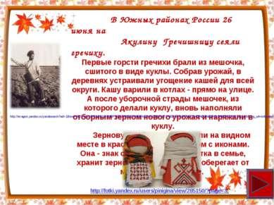 В Южных районах России 26 июня на Акулину Гречишницу сеяли гречиху. Первые го...