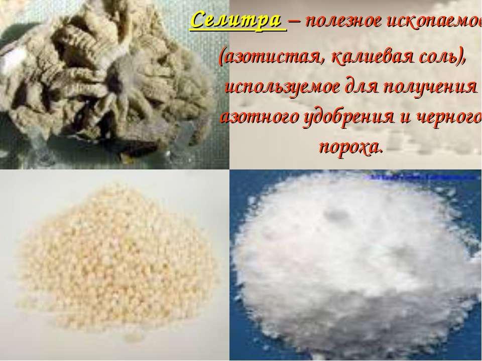 Селитра – полезное ископаемое (азотистая, калиевая соль), используемое для по...
