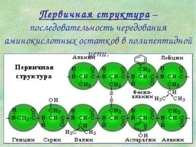 Первичная структура – последовательность чередования аминокислотных остатков ...